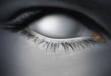 blindness - The Optical Journal
