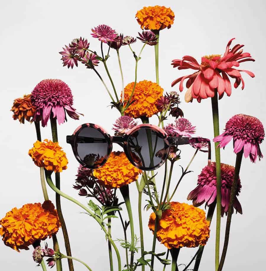 Tarian Flowers